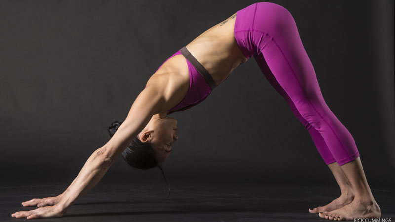 Integrate All Actions In Downward-Facing Dog Pose